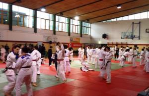 trofeo judo