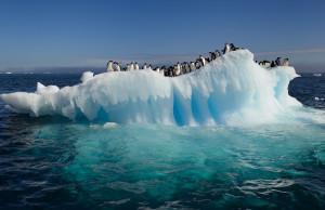 Scienziati di Ca' Foscari raccontano l'esperienza in Antartide