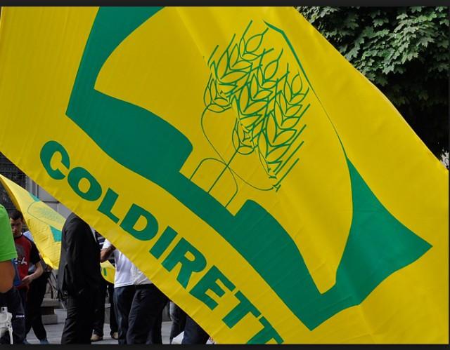 Latte: Coldiretti, Italia in ostaggio multinazionale, antitrust agisca