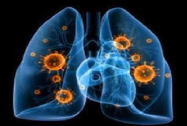 12 novembre- giornata mondiale contro le polmoniti