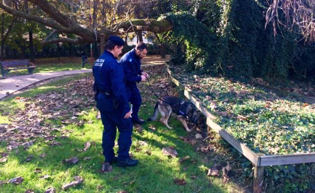 Polizia municipale: Kuma setaccia i parchi e trova droga nascosta. Una grossa barretta di hashish, da cui era possibile ricavare una quindicina di dosi