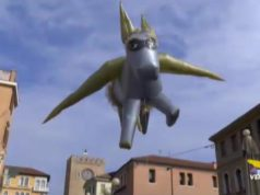 Volo dell'Asino