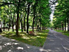 I Giardini di Sant'Elena zona ristoro nel sestiere di Castello