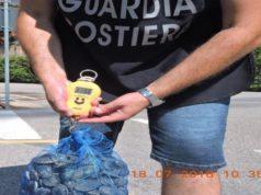 Pesca illegale di vongole: blitz della Guardia Costiera