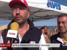 Avis a Ferragosto sulle spiagge