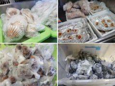 Sottomarina: sequestrati 350 kg di carne e prodotti ittici