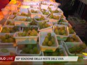 60° edizione delle Feste dell'Uva: grande successo a Jesolo