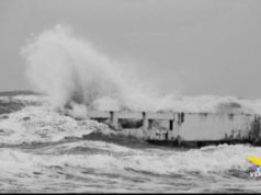 Il mare d'inverno per Riccardo Roiter Rigoni