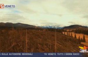 TG Veneto: le notizie del 14 dicembre