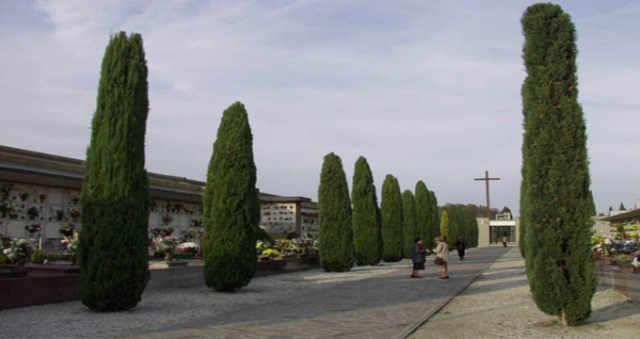Al via la raccolta differenziata nei cimiteri di San Donà di Piave